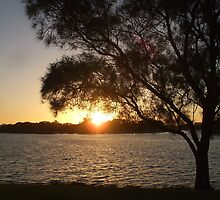 Burswood Foreshore, Perth WA by Karyn Lake