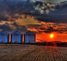 prairie giants by Heath Dreger