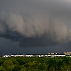 Late Gusty Storm by Rowland Beardsell