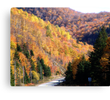 Autumn Splendor-Cabot Trail Canvas Print