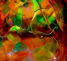 Autumn Glass by Charles Plant