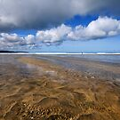The Beach by RoystonVasey
