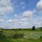 Kibworth Country Aug 2004 by ADzArt