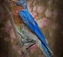 Vintage Bluebird by Bonnie T.  Barry