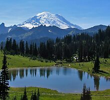 Tipsoo Lake in Mt. Rainier National Park by Barb White