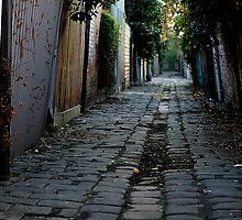 Melbourne Alley by Rosina  Lamberti
