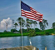 Everybody's all American Egret! lol  by Wendy Mogul