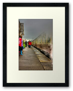 On The Platform  - Levisham Station by Trevor Kersley