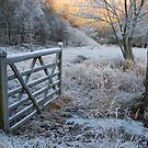 Winter Gate by Simon Hathaway
