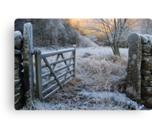 Winter Gate Canvas Print