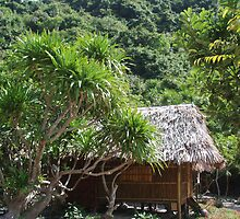 Monkey Island Hut by sarahric