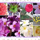 Flowers Galore Collage by judygal
