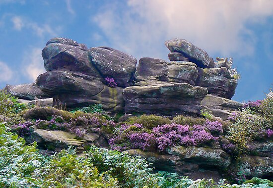 Brimham Rocks by Trevor Kersley