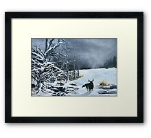 Creatures of the Edge Framed Print