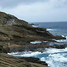 Hawaiian Coastline by cookyjar