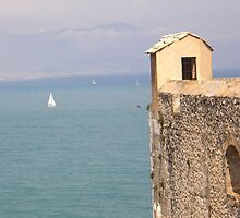 Antibes Fort Carré watch tower over the  sea (France) by mikequigley