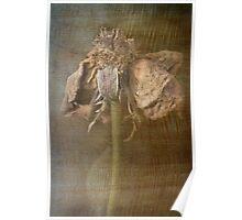 Rust 'n Roses ~ #3 Poster