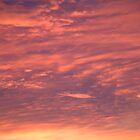 Red Sky by TREVOR34