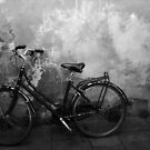 La Bicicletta (The Bicycle) by Sazh