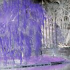 WEEPING IN PURPLE by nonarom