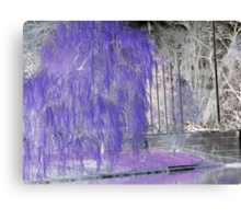 WEEPING IN PURPLE Canvas Print