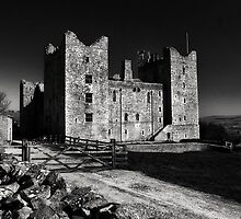 Castle Bolton by Chris Tait