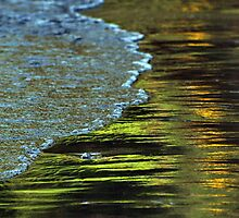 Spring Reflections by Barbara Burkhardt