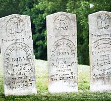 Perry Family Gravestones by Delany Dean
