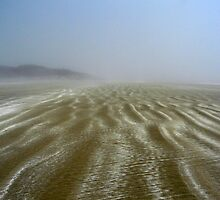 Sands of Tofino by Scatterdragon