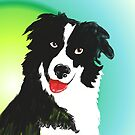 A Border Collie by Ajmdc