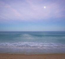 Wave Watcher by AnnieD