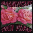 Magnificent Twin Pinks by TLCGraphics