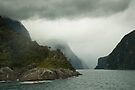 Milford Sound in Cloud  by Werner Padarin