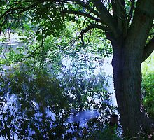 Tree on Pond by schiabor
