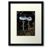 Light Blue Fairies Framed Print