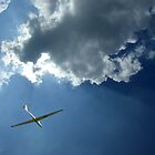Descending glider by Jon Tait