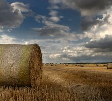 Hay bales by Jon Tait