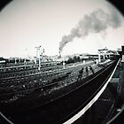 Steam Train by Ollie Coghill