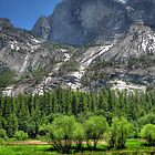Half Dome  by Shaina Lunde