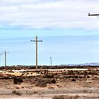 poles in salt flats by Andy Bulka