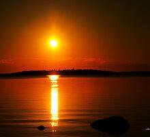 golden sunset by Cheryl Dunning