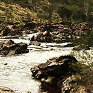 BELLS RAPIDS 2 by Marinapallett