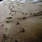 Footprints in the Sand by ArtFr33k