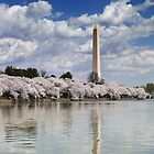 Cherry Blossoms on the Tidal Basin, Washington, D.C. by Carol M.  Highsmith
