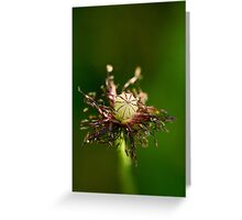 Accessoire Greeting Card