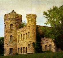 Kansas City's Castle by Delany Dean