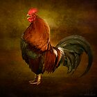 Le Coq Royal by okkibox