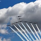 Snowbirds 3 by katievphotos