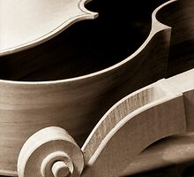Slobodkin's Cello No. 1 by Liz Grandmaison