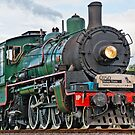 Steam Train by Donna Rondeau